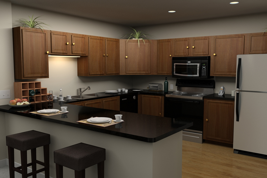 Modern Kitchen Apartment